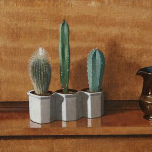 Cacti and Jug